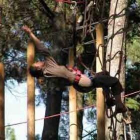 Aventure dans les arbres / Course d'orientation
