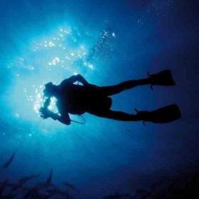 Plongée en mer