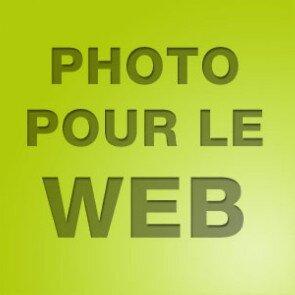 Domaine des Thômeaux