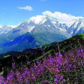Liberty Mont-Blanc**