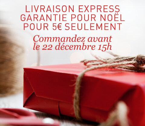 Livraison express garantie pour Noël pour 5€ seulement