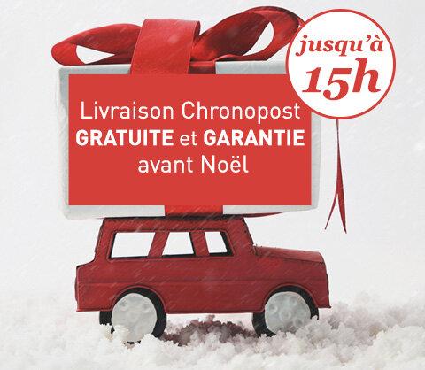 Livraison express gratuite et garantie pour Noël