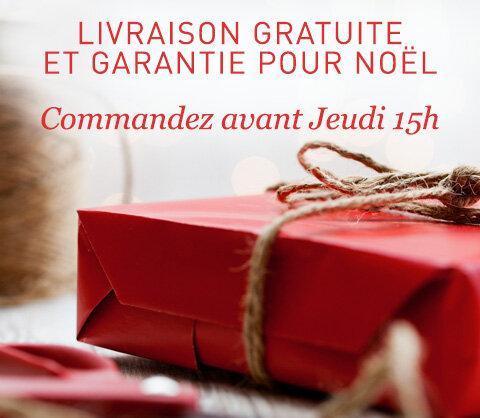 Livraison gratuite et garantie pour Noël